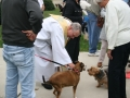1_23_Blessing-of-the-Pets-St.-Lukes-R.C.C-10-06-2019-029