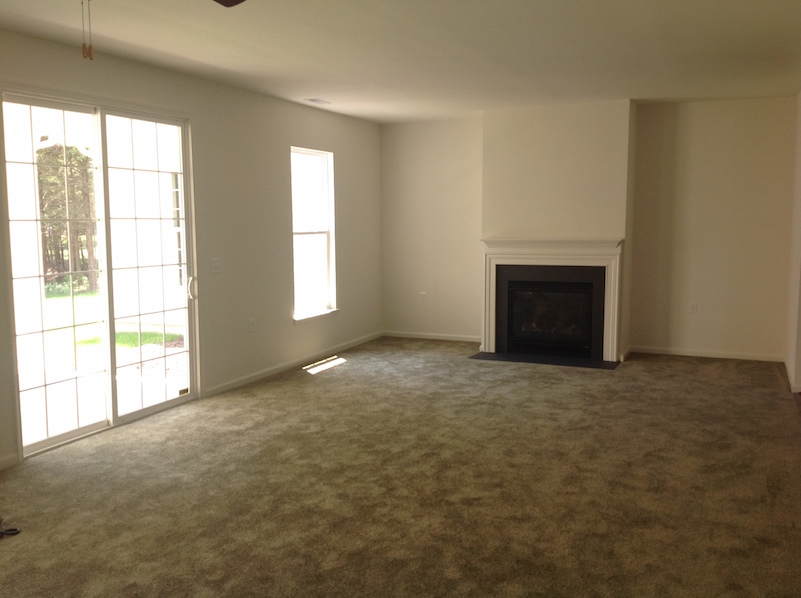 The Great Room/Fireplace